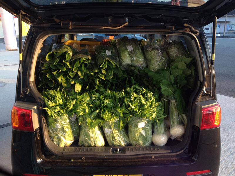 萩野菜を車に積む