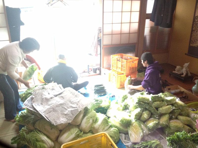 野菜の梱包作業