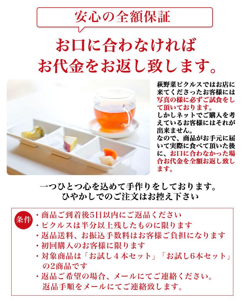 hagiyasai06_07